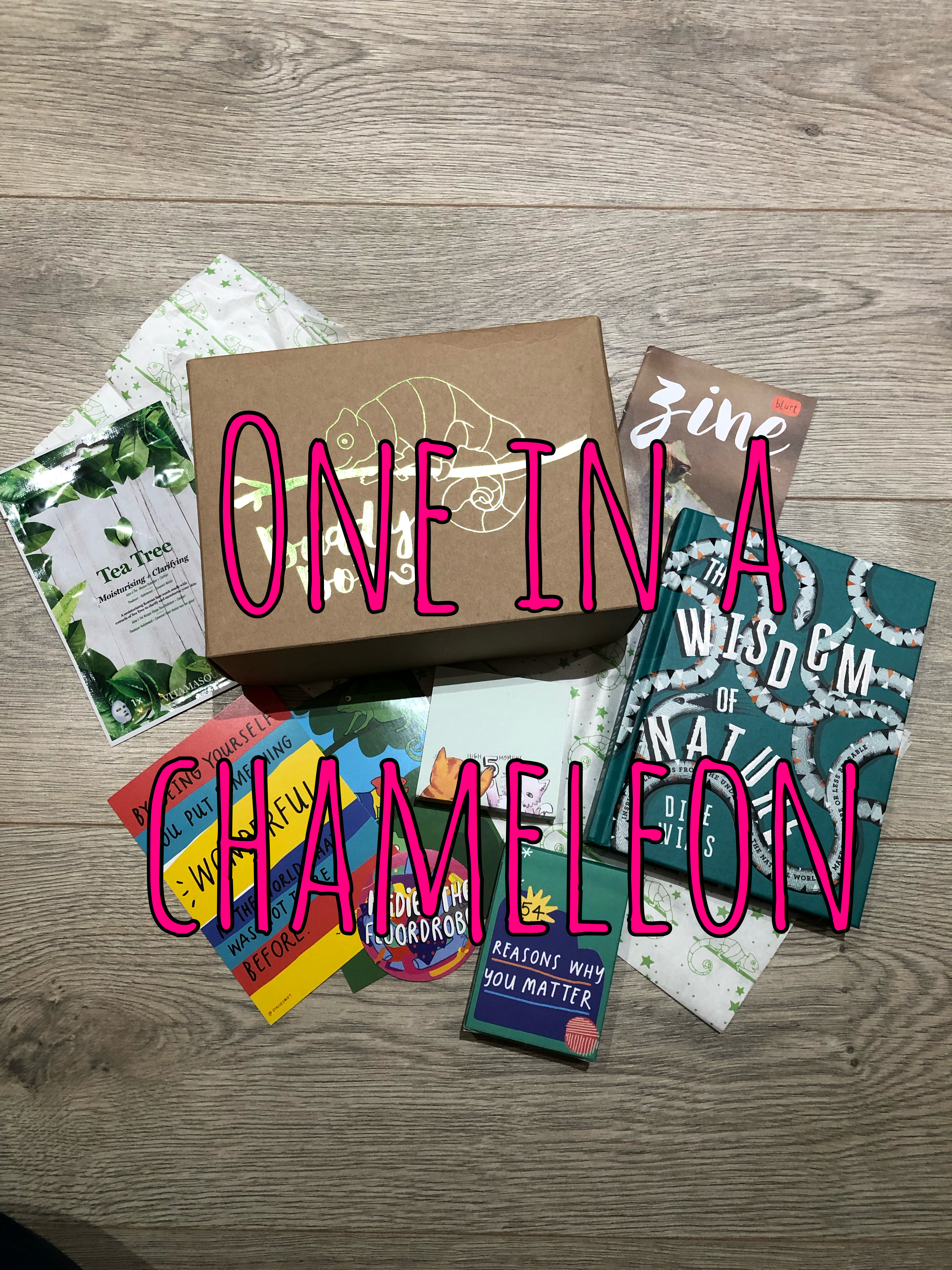 One In A Chameleon – Buddy Box Review graphic
