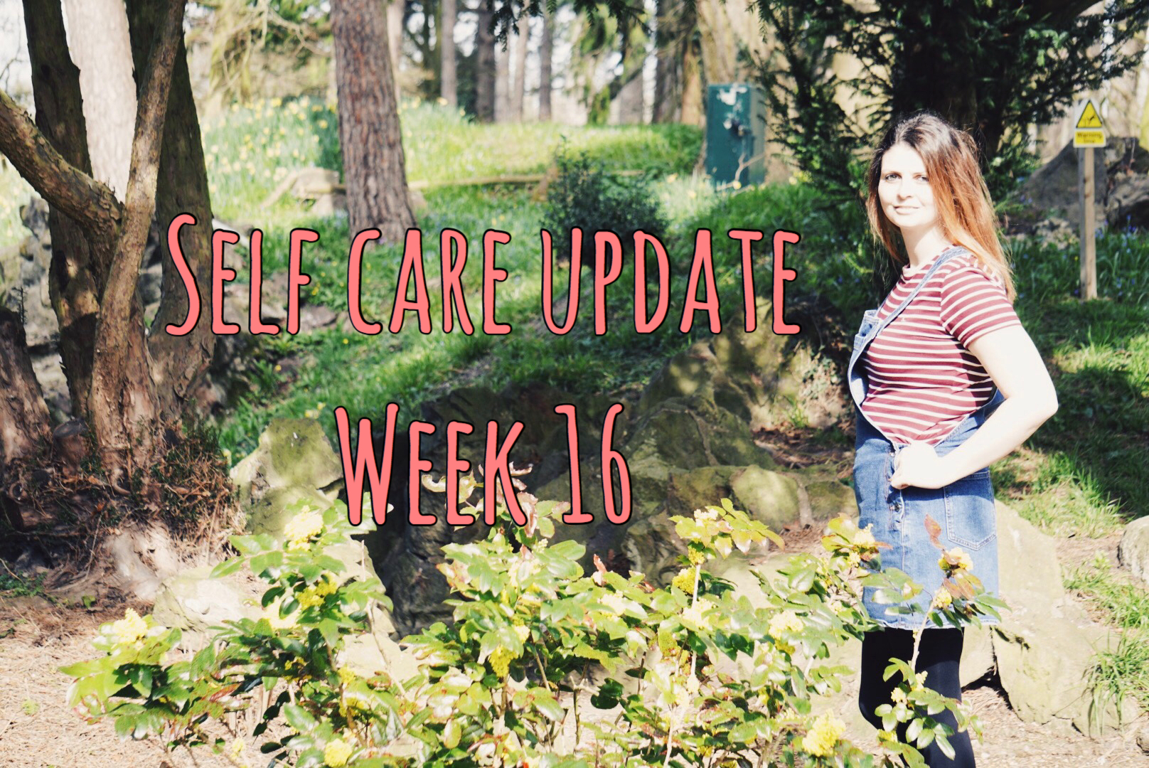 Self Care Update Week 16 graphic